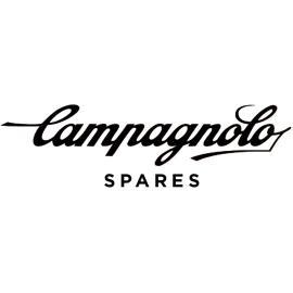 Campagnolo Disc Brake Bleed Kit