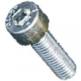 Fisher Allen M5 x 12 Stainless Steel Bolt (1 Piece)