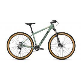 Focus Whistler 3.8 Mountain Bike 2020