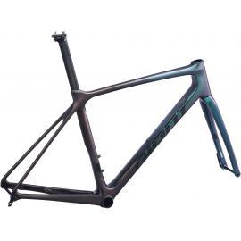 Giant TCR Advanced Pro Disc-FF A Road Bike Chameleon Galaxy 2021