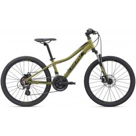 Giant XtC Jr Disc 24 Mountain Bike 2020