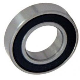 60022 RS Bearing
