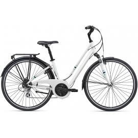 Liv Flourish FS 2 Hybrid Bike 2020