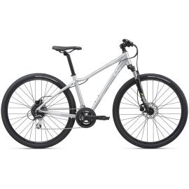 Liv Rove 3 DD Disc Hybrid Bike 2020