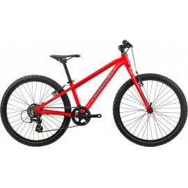 Orbea MX 24 Dirt Kids Bike 2020