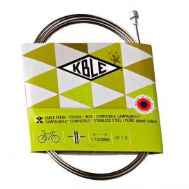 Transfil Campag SS Brake Wire