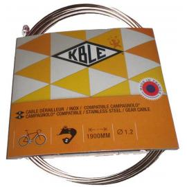 Transfil Campag SS Gear Wire 190cm