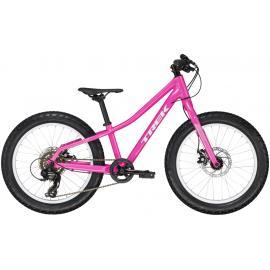 Trek Roscoe 20 Inch Kids Bike 2020